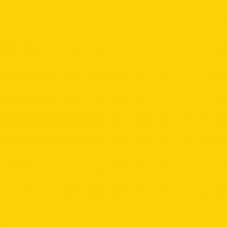 Traffic Yellow RAL 1023